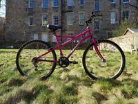 Apollo Incessant Female Bike with upgrades and stuff