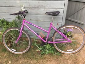 Raleigh Isis Girls Bike For Sale