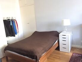 Lovely studio in the central London