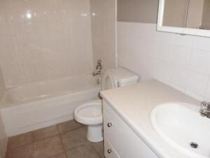 Newly renovated bachelor for $783 with free Telus high speed int Edmonton Edmonton Area image 4