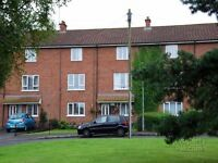 2 BED APARTMENT ** FINAGHY ** £550 **