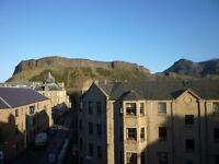 Delightful1 Bedroom Flat, Few minutes walk from Edinburgh University and Meadows