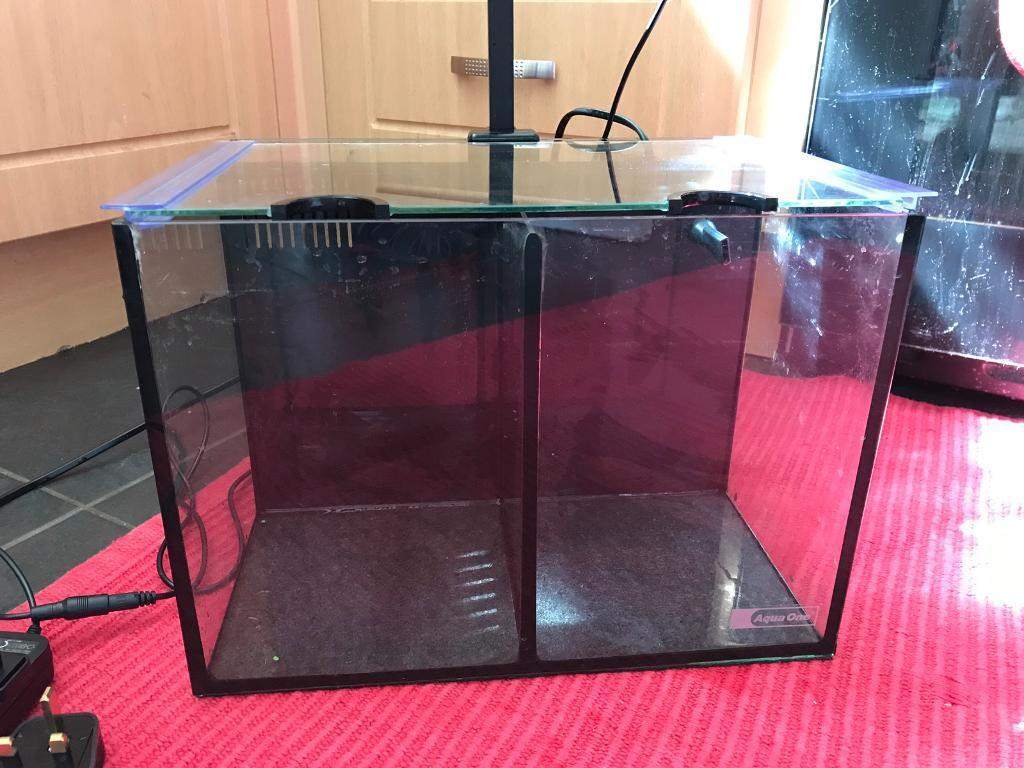 Aqua one betta duo divided tank with filter pump and for Divided fish tank