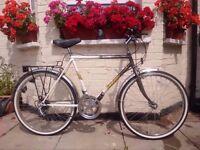 xxx Emmelle 15 speed bike