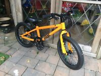 FROG BIKE 48 FOR BOYS AND GIRLS