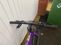 Frog 73 bike