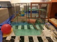 Gerbilarium hamster or gerbil cage