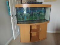 Juwel Bow Fronted Fish Tank