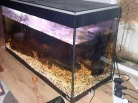 Flaval 240l fish tank