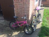 Girls bike vgc £20