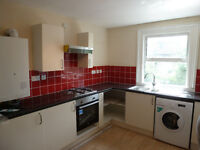 A VERY LARGE ONE DOUBLE BEDROOM FLAT COMPLETELY REFURBISHED & CLOSE TO TUBE/BUSES, SHOPS