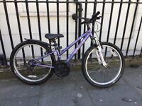 Girl's/Lady's bike