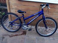 Purple Ridgeback Bike