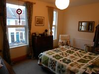 Large double room available (unfurnished) in relaxed houseshare in St. Werburghs from 01/11/16.