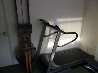 Horizon Omega II Treadmill.