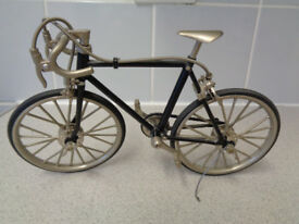 Fully articulated racing bike model