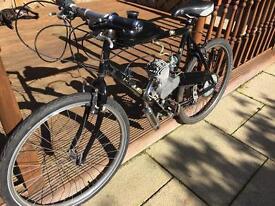 49cc bicycle