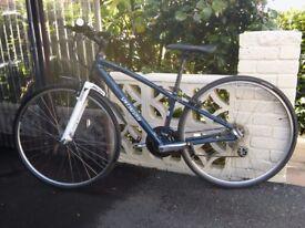 Specialized Vita Xs bicycle(2011)