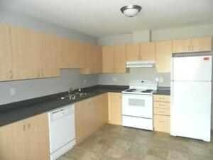 Modern Two Bedroom with Laundry Close to Walmart and Totem Mall