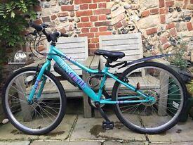 Very nice girls blue bicycle