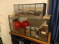 Gerbil Cage/Tank and Equipment