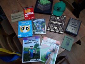 Minecraft Book Bundle