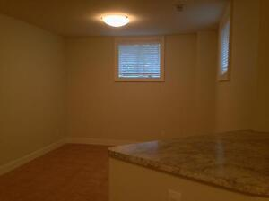 FULLY RENOVATED 2 BD 2 BATH APT! STEPS TO QUEEN'S- 432 UNION ST Kingston Kingston Area image 3