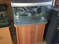 Aqua one fish tank with stand