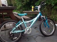 Girls Mountain Bike: TREK mt 60