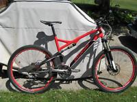 2010 Specialized Epic