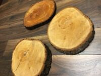 10 x real TREE SLICE STUMP (Log Slice) Wedding Centre Pieces