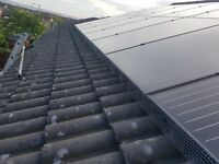 Solar panel pest protection