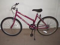 "Ladies/Womens Concept Eclipse 17.5"" Mountain Bike"