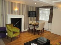 Holiday Apartment / central London / Oxford St / A large 1 bedroom modern apartment, sleeps up to 3