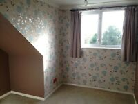 Single bedroom for female tenant