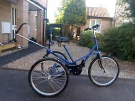 TOM CAT TRIKE AND TOWING ATTACHMENT PLUS EXTRAS £500