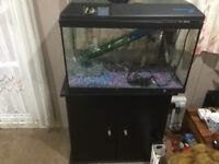 Fish tank with cupboard stand and heater and filter