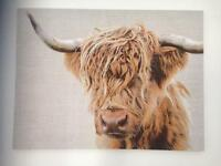 Highland cow canvas
