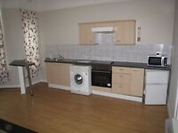 Super Unfurnished One bed Flat Laurel Rd L7