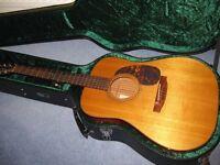 Stanford/Furch Acoustic Guitar-D5M