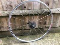 Mavic Aksium Race Rear 700c Bike Wheel, Ultegra Cassette