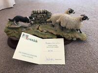 Teviotdale collection sheep dog No.45
