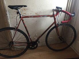 A single speed, light, steel frame, koga miyata road bike in search of a new owner.