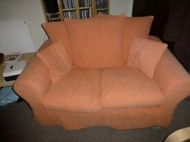 2 (TWO) X 2 Seater Sofas for Sale - Good Condition