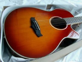 tanglewood electro acoustic superfolk