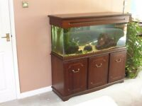 Beautiful 48 inch mahogany effect fish tank cabinet with almost everything needed to run it