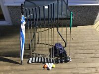 Full set of Ladies Regal golf clubs together with bag, balls and umbrella.