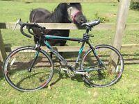 Viking Road Bike - needs some TLC