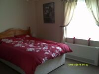 Spacious double room available