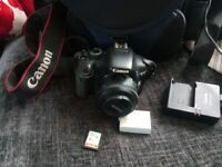 Canon 550d   Digital Cameras for Sale - Gumtree
